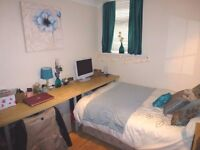 Professional House Share ---Double Room Available in a shared house