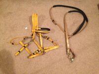 zilco yellow, endurance bridle/marathon, brass with reins, cob size