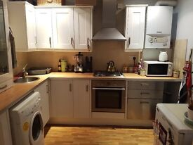 Refurbished 1 bedroom flat available in Horfield