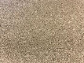 Carpet Lano Star Twist Elite 50oz twist