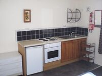 Fanatastic Studio /Bedsit to-let in Leafy Nether Edge including bills
