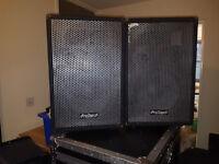500w prosound speakers