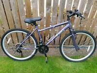 Hybrid mountain bike