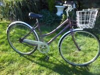 NICE RALEIGH PIONEER CAPRICE LADIES DUTCH STYLE BIKE WITH BASKET SERVICED
