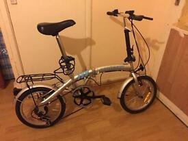 Adults bicycle