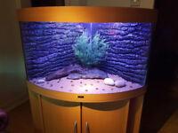 JUWEL TRIGON 190 LITER CORNER FISH TANK AND STAND FOR SALE,,