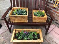 Garden wooden planters