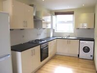 RECENTLY NEWLY BUILT THREE DOUBLE bedroom FURNISHED apartment - Red Lion Square - SW18