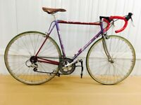 Giro De Italia 12 speed 58 cm Classic Italian Raod Bike STI Gearing Fully Serviced