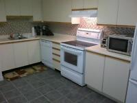 4Bed/3Room FURNISHED Condo avail Jan 1 2015 - 188 Spadina Ave