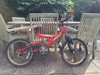 Rhino Carnage Child's Mountain Bike