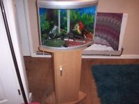 corner fish tank 2ftx2ft