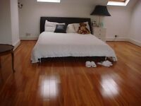 Spacious loft room with separate bathroom in Richmond Hill area.