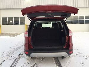 2014 Ford Escape SE Edmonton Edmonton Area image 14