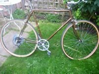 Vintage/Retro Raleigh 'Merlin'