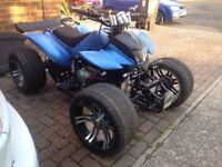 250cc quad Winter project road legal