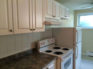 Spacious Lower Level Two Bedroom Unit in Central Location- Jul 1