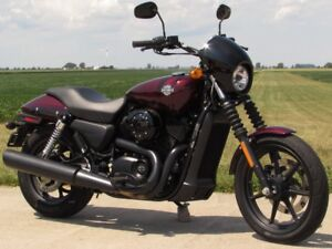 2015 Harley-Davidson Street 500  Only 3,400 Kilometres  Low and