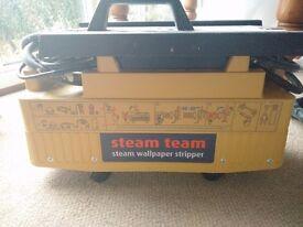 Wallpaper steamer. Hiretech Steam Team