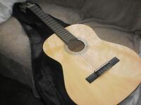 Guitar Elevation model 540/6441(D)