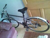Ridgeback city bike with 21 gears and speedometer