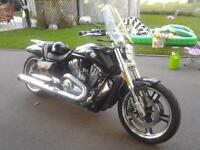 V-ROD MUSCLE 2011