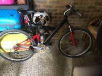 Cycle Bike