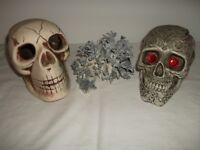 Aquarium Skull Ornaments & Corral