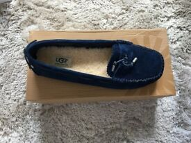 Brand New in box Ugg shoes uk 7