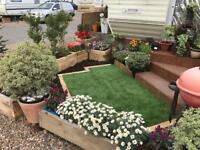 Garden planters and plants for sale