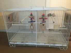 badgies cage