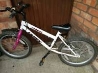 FREE : Huffy Children Bicycle