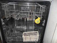 Large Dishwasher