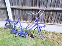 Raleigh caprice frame