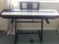 Digital Piano P35 Yamaha. Excellent condition, soft case (Yamaha), stand and sustain pedal FC5 £275