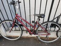 ProBike Horizon Burgundy Ladies Bike