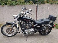 Harley Davidson 1200 XL Custom