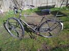Large Mens Phoenix Classic Dutch Bicycle