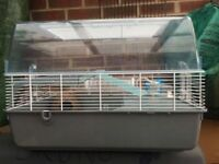 Hamster cage large