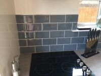 Kitchen/Bathroom tiles plus adhesive, grout and stainless trim (1 1/4 sq mtrs approx)