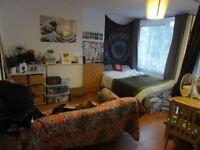 Massive double room in vegan flatshare with balcony
