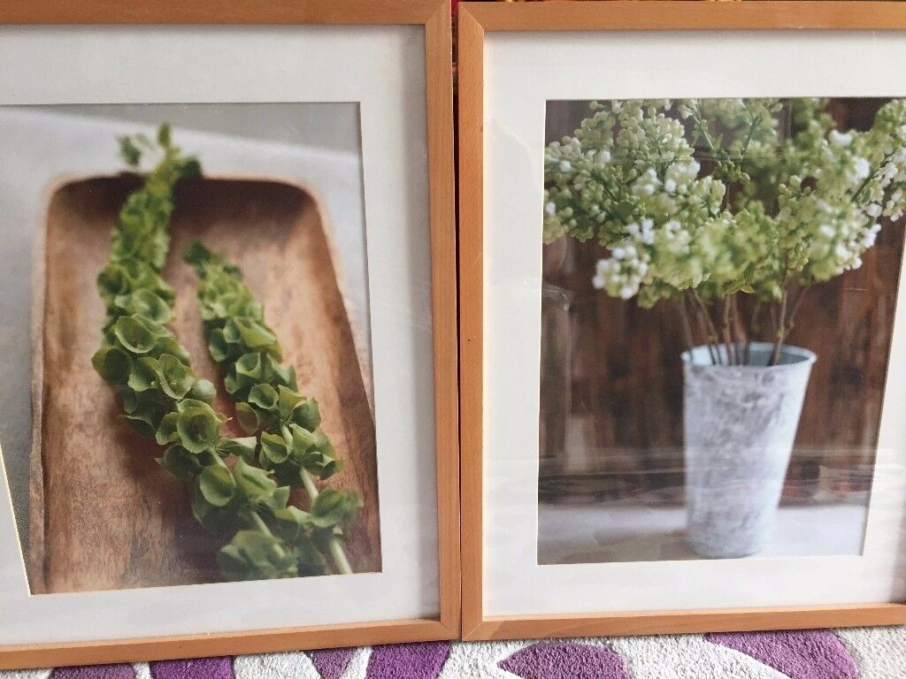 3 Framed Natural Wall Pictures