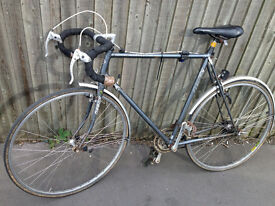 race bike bycicle 14 gears