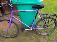 Ladies raleigh emelle mountain bike