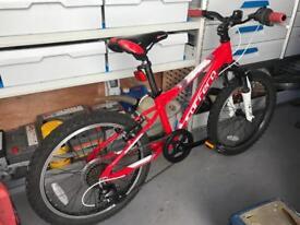 Carrera blast child's mountain bike