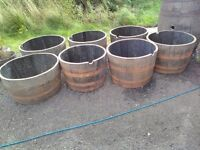 Whisky barrel planters