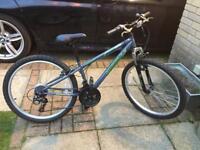 """Apollo switch 24"""" wheel junior mountain bike"""