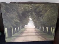Large canvess print with 3 smaller canvas prints