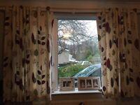 Curtains (Debenhams)