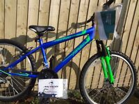 BRAND NEW AVIGO MOUNTAIN BIKE